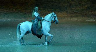 Cavalia: Beautiful, magical and spectacular