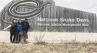 Snakes on the Plain