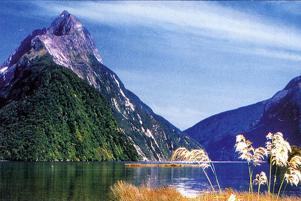 Cruising the Fiordland of New Zealand