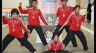 Pan Am Martial Arts Games 2011 results