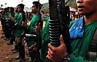 NPA rebels return to government fold