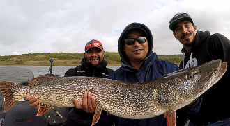 Huge Lake Trout and Monster Pike