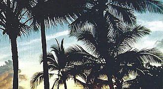 "KAUA'I, ""The Garden Isle"""