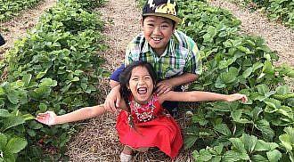 Happy Berry Picking