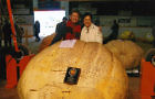"ROLAND, Manitoba, home of the ""WORLD'S LARGEST PUMPKIN""  (part 2)"