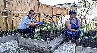 Garden of Gift Giving inspires Filipino seniors to engage in outdoor and indoor gardenings